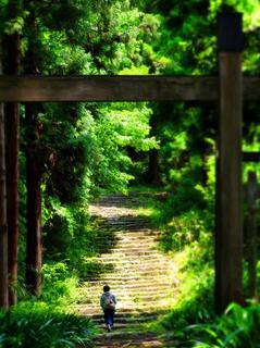 09松平家墓所s.jpg