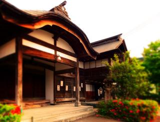31鶴井筒s.jpg