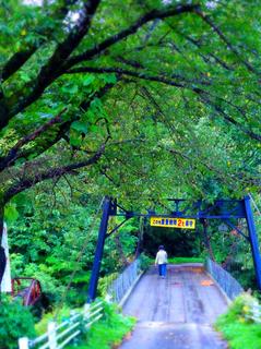 56つり橋の里DSC02420.JPG