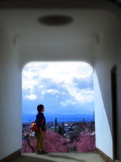 60小田山善龍寺山門からs.jpg
