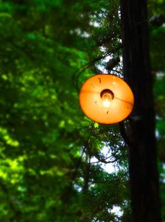 60熊野神社s.jpg