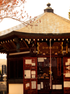 60龍興寺.JPG