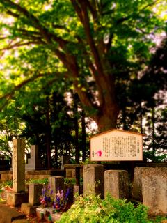 66大龍寺山本家墓.JPG