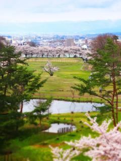 66小田山子供の森.JPG
