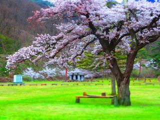 68小田山子供の森s.jpg