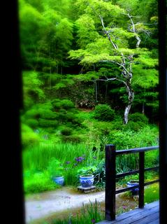 74大龍寺本堂より庭園s.jpg