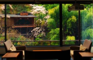 い瀧の湯ロビー桜s.jpg