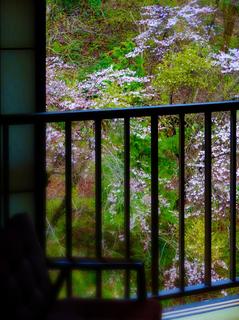 お瀧の湯客室桜s.jpg